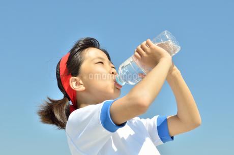 水を飲む小学生の女の子(運動会、体操服)の写真素材 [FYI02979044]