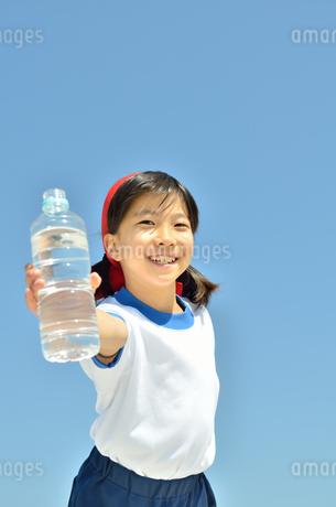 水を飲む小学生の女の子(運動会、体操服)の写真素材 [FYI02979048]
