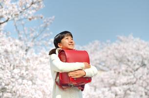 小学生の女の子(桜、ランドセル)の写真素材 [FYI02979051]