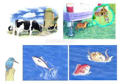 牧場の乳牛 キャンプ場のイタチ カワセミ マグロ タコ 鯛 のイラスト素材 [FYI02979117]