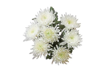 菊の花束の写真素材 [FYI02979236]