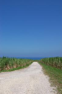 快晴の空と海へ続く田舎の一本道の写真素材 [FYI02979490]