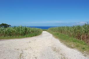 快晴の空と海へ続く田舎の一本道の写真素材 [FYI02979493]