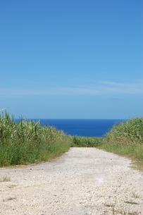 快晴の空と海へ続く田舎の一本道の写真素材 [FYI02979495]