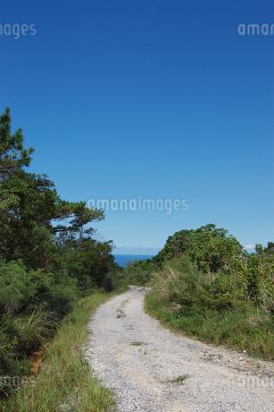 快晴の空と海へ続く田舎の一本道の写真素材 [FYI02979523]
