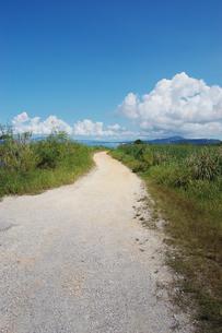 快晴の空と海へ続く田舎の一本道の写真素材 [FYI02979525]