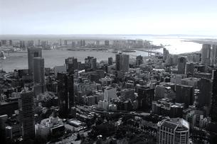 レインボーブリッジの見える東京ベイエリアの空撮の写真素材 [FYI02979602]