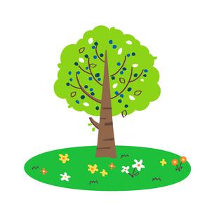 木と草花のイラスト素材 [FYI02979638]