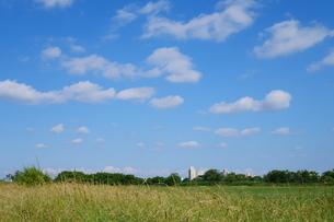 草地と青空が広がる風景の写真素材 [FYI02979734]