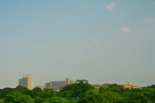 青空の下に広がる緑に囲まれた街の写真素材 [FYI02979735]