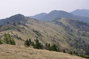 大菩薩嶺 笹原の尾根の写真素材 [FYI02979818]