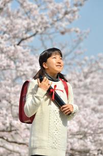 小学生の女の子(桜、ランドセル、卒業証書)の写真素材 [FYI02979841]
