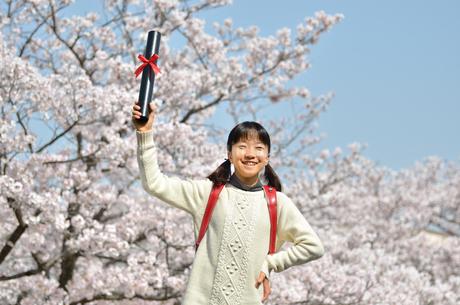 小学生の女の子(桜、ランドセル、卒業証書)の写真素材 [FYI02979843]