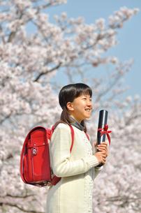 小学生の女の子(桜、ランドセル、卒業証書)の写真素材 [FYI02979846]