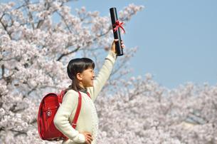 小学生の女の子(桜、ランドセル、卒業証書)の写真素材 [FYI02979847]