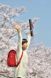 小学生の女の子(桜、ランドセル、卒業証書)の写真素材 [FYI02979849]
