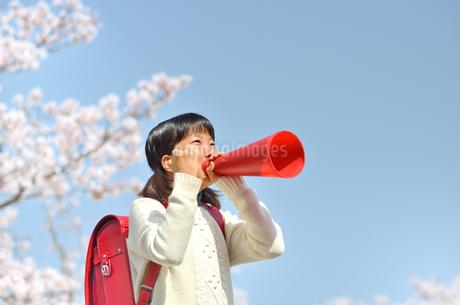 メガホンで応援する小学生の女の子(桜、ランドセル)の写真素材 [FYI02979854]