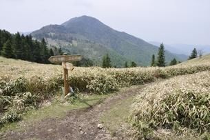 峠の風景の写真素材 [FYI02980117]