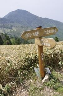 峠の風景の写真素材 [FYI02980126]