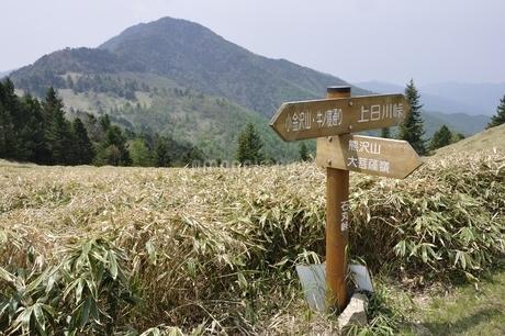 峠の風景の写真素材 [FYI02980129]