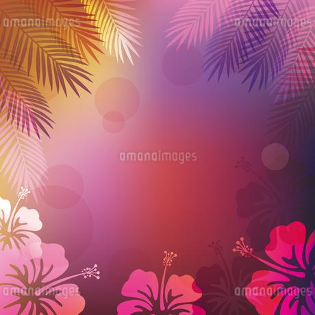 ハイビスカス 椰子の葉 背景のイラスト素材 [FYI02980256]