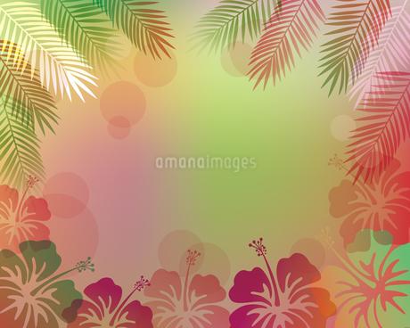ハイビスカス 椰子の葉 背景のイラスト素材 [FYI02980273]