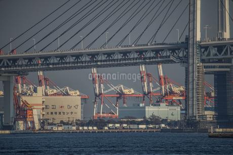 横浜ベイブリッジとプラントの写真素材 [FYI02980350]