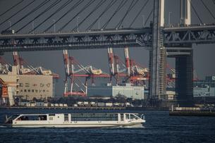 横浜ベイブリッジとプラントの写真素材 [FYI02980351]