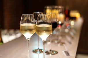 白ワインのイメージの写真素材 [FYI02980432]