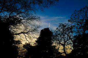 秋の夕暮れの写真素材 [FYI02980542]