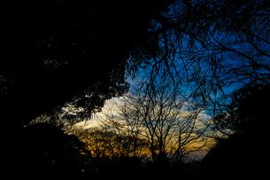 秋の夕暮れの写真素材 [FYI02980543]
