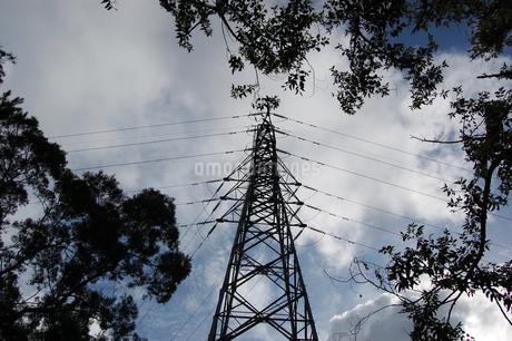 日本の送電鉄塔を見上げるの写真素材 [FYI02980631]