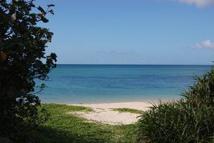 エメラルドグリーンの海と白い砂浜と緑の写真素材 [FYI02980634]