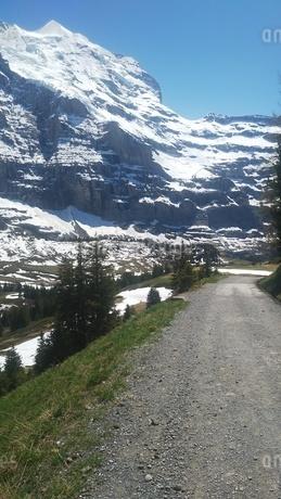 スイス ユングフラウ地方 クライネシャイディック~ヴェンゲンアルプ ハイキングコース 2の写真素材 [FYI02980664]
