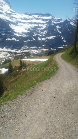 スイス ユングフラウ地方 クライネシャイディック~ヴェンゲンアルプ ハイキングコース 3の写真素材 [FYI02980666]