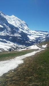 スイス ユングフラウ地方 クライネシャイディック~ヴェンゲンアルプ ハイキングコース 6の写真素材 [FYI02980670]
