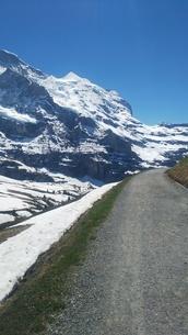 スイス ユングフラウ地方 クライネシャイディック~ヴェンゲンアルプ ハイキングコース 8の写真素材 [FYI02980672]