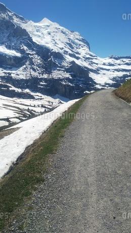 スイス ユングフラウ地方 クライネシャイディック~ヴェンゲンアルプ ハイキングコース 9の写真素材 [FYI02980673]