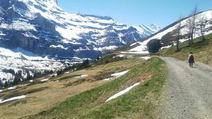 スイス ユングフラウ地方 クライネシャイディック~ヴェンゲンアルプ ハイキングコース 12の写真素材 [FYI02980676]