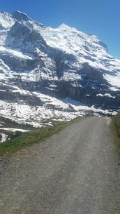スイス ユングフラウ地方 クライネシャイディック~ヴェンゲンアルプ ハイキングコース 14の写真素材 [FYI02980678]