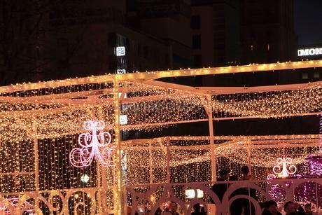 札幌市 大通公園、第38回イルミネーションの美しい風景 の写真素材 [FYI02980742]