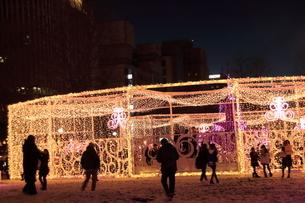 札幌市 大通公園、第38回イルミネーションの美しい風景 の写真素材 [FYI02980745]