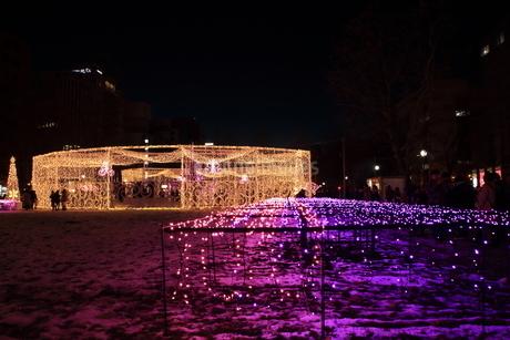 札幌市 大通公園、第38回イルミネーションの美しい風景 の写真素材 [FYI02980750]
