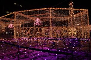 札幌市 大通公園、第38回イルミネーションの美しい風景 の写真素材 [FYI02980756]