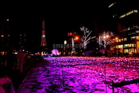 札幌市 大通公園、第38回イルミネーションの美しい風景 の写真素材 [FYI02980768]