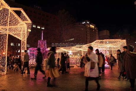 札幌市 大通公園、イルミネーションの風景 の写真素材 [FYI02980769]