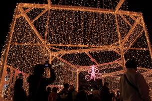 札幌市 大通公園、イルミネーションの風景 の写真素材 [FYI02980771]