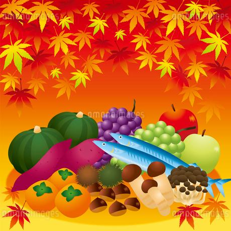 秋の味覚のイラスト素材 [FYI02980785]