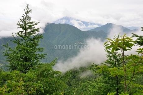 雲被る富士山の写真素材 [FYI02981117]
