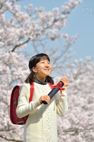 青空で卒業証書を持って笑う小学生の女の子(桜、ランドセル)の写真素材 [FYI02981226]